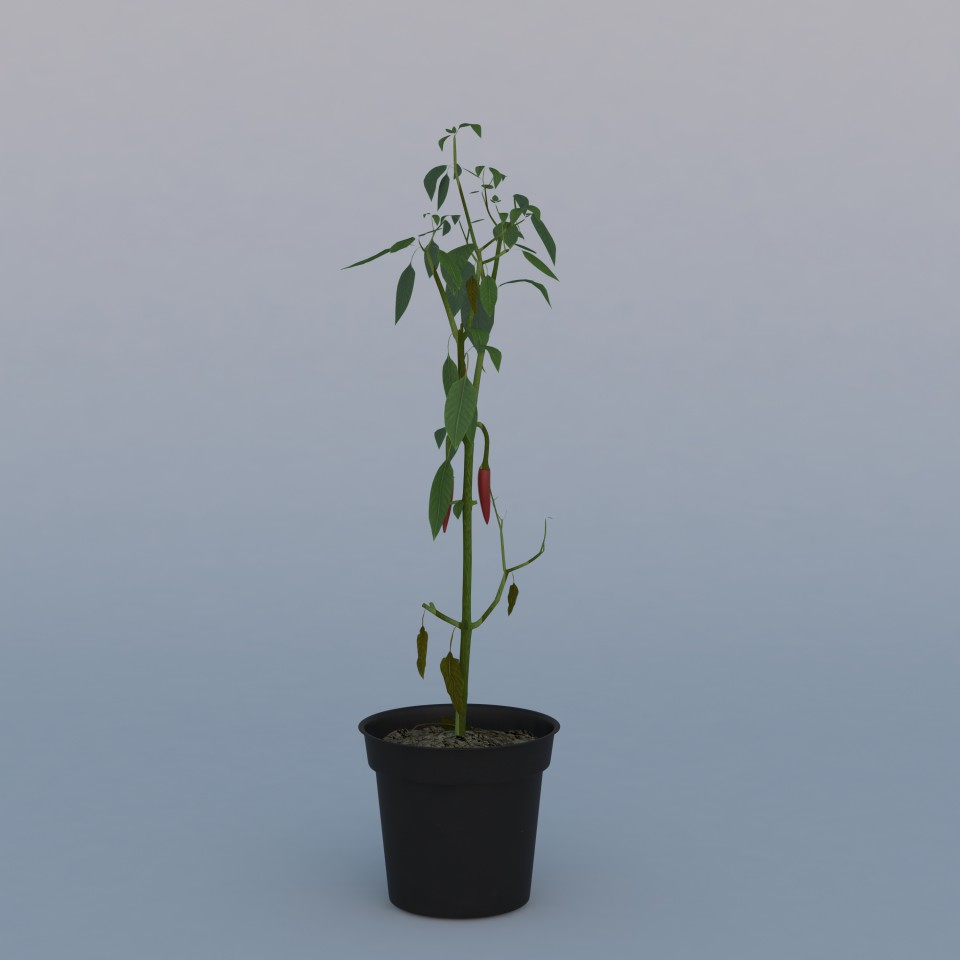 Plant_full_js