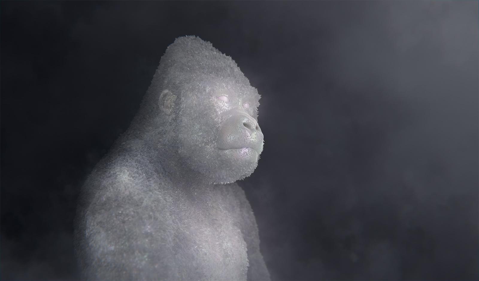 Crystal_Gorilla3_cdts